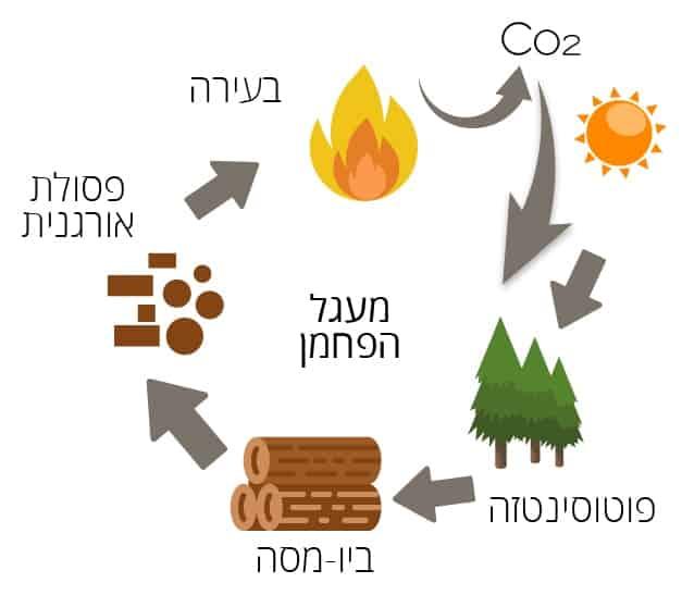 ביו מסה תרשים מעגל הפחמן